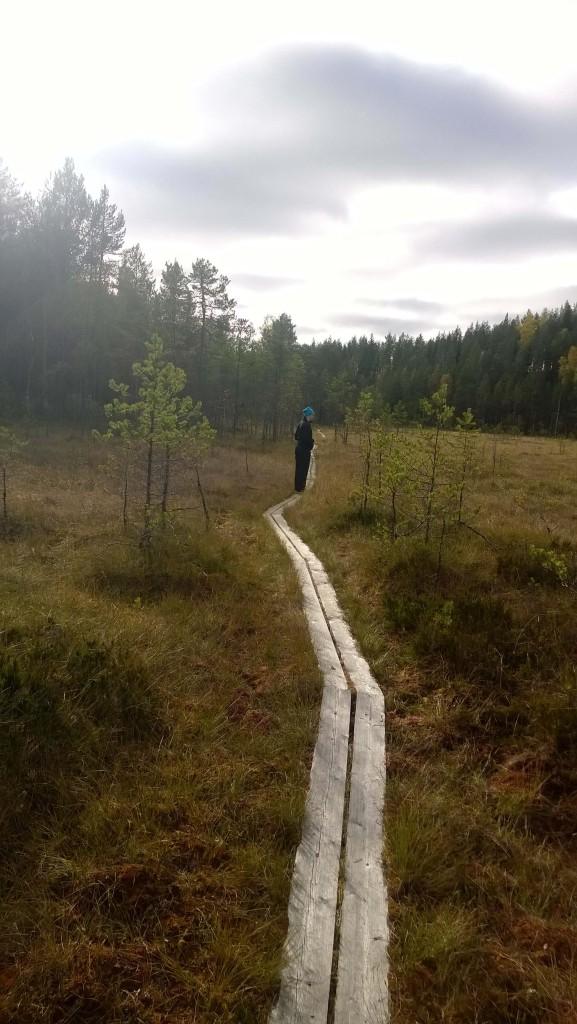 Metsälenkit ovat Rantaselle tärkeitä henkisen kunnon ylläpitäjiä.